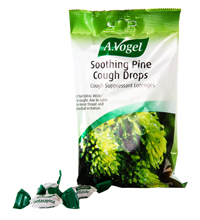 Soothing Pine cough drops really work! Made with fresh wildcrafted pine buds to stop the cough, reduce inflammation and help loosen the phlegm naturally..