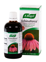 100% certified organically grown Echinacea supporting a healthy immune response..