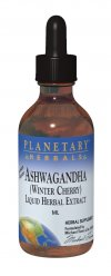 Ashwagandha (Withania somnifera) is one of the most highly respected adaptogenic tonifiers of the 5,000-year-old Ayurvedic herbal tradition of India. Adaptogens are a class of substances said to help the body adapt to physiological and psychological stresses and changes. In this regard, ashwagandha is often compared with Asian Panax Ginseng. Planetary Herbals formulator Michael Tierra, L.Ac., was instrumental in bringing this key botanical to the United States..