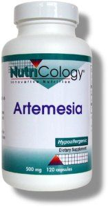 Artemesia (100 Vcaps) NutriCology