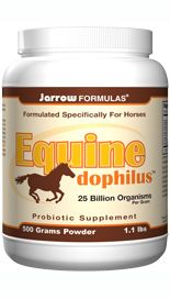Equine-Dophilus (25 billion organisms per grams 500 grams) Jarrow Formulas
