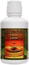Fulvic Green ( 1 pint )* Ambaya Gold