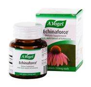 Echinaforce Tabs (120 tab) A Vogel
