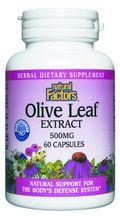 Olive Leaf Standardized Extract (500 mg 60 capsules)* Natural Factors