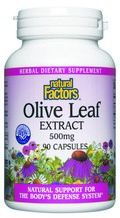 Olive Leaf Standardized Extract (500 mg 90 capsules)* Natural Factors