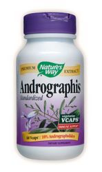 Andrographis Standardized (60 caps) Nature's Way