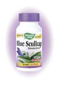 Blue Scullcap Standardized (60 vcaps) Nature's Way